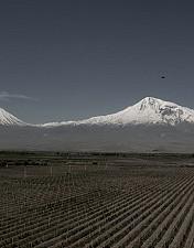 45 Armenischer Wein