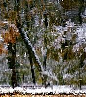 Schneeherbst 21 2012
