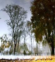Schneeherbst 5 2012