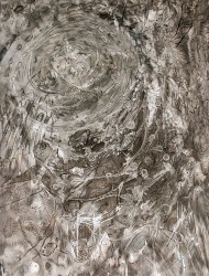 Wildwuchs 12 76x56 cm Tusche auf Papier 2018