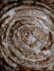 Wildwuchs 16 45x45 cm Tusche auf Papier 2018